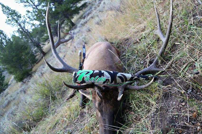 Proper elk calling can be the difference in bringing a big bull into bow range.