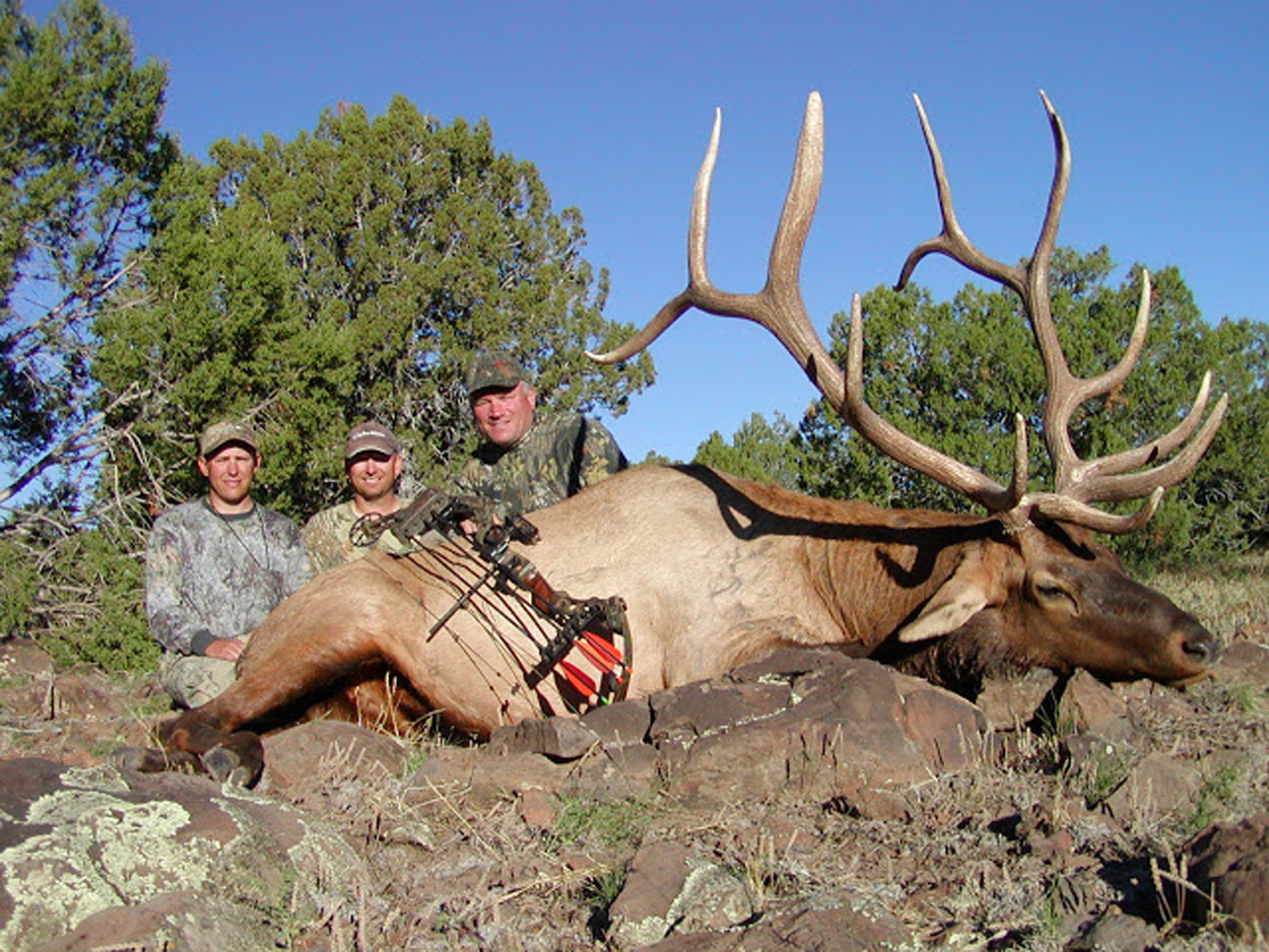 Jay-Scott-Outdoors-Arizona-Elk-Hunting-Outfitter-005